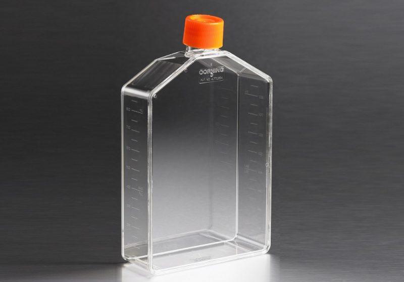 Frasco cultura 225cm2 Corning (garrafa para cultura, tampa sem filtro, fechada), poliestireno, estéril, código 431081, marca Corning econolab