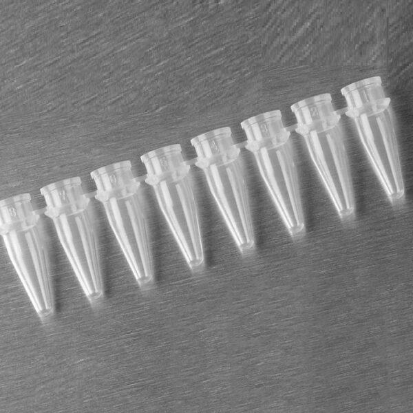 Micro tubopcr tiras Axygen, em tiras com 8 tubos, sem tampa, volume 0.2ml, em outras palavras, 200ul, transparente, livre de DNAse / RNAse, caixa com 125 tiras código PCR-0208-C, marca Axygen